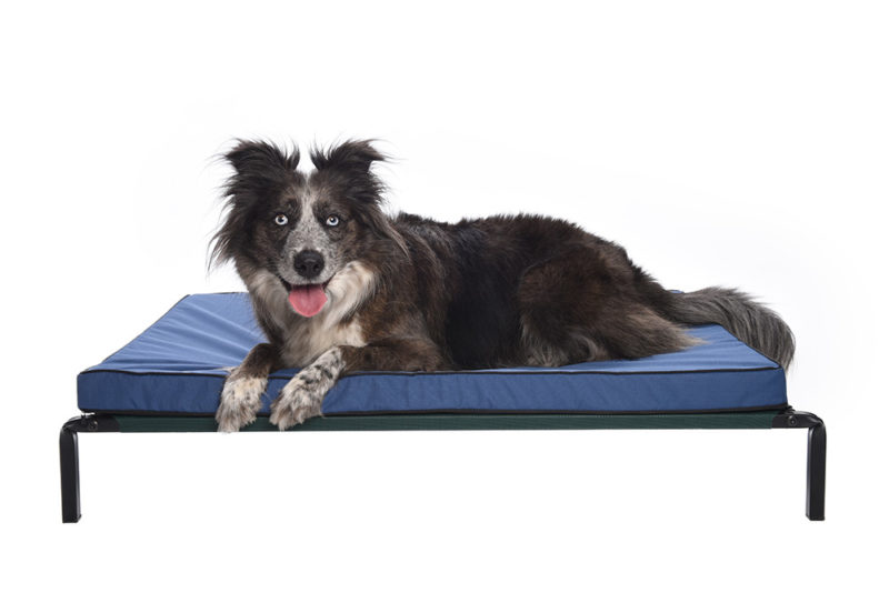 Water resistant mattresses for dogs