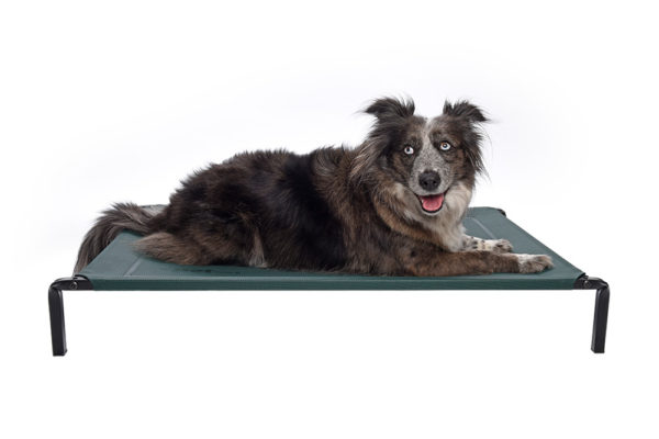 dogs-love-our-extra-comfy-premium-durable-flea-free-pets-beds