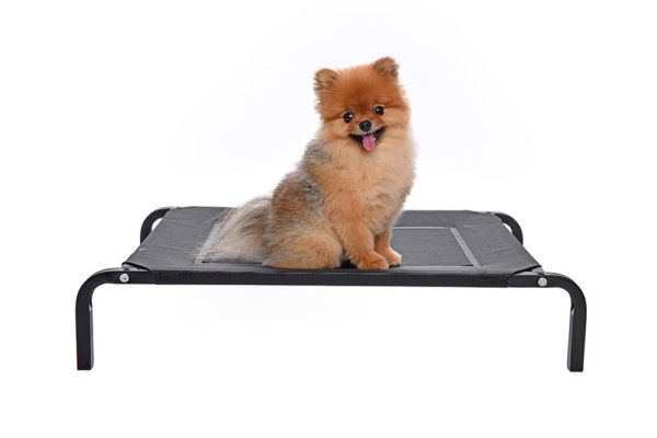 fonzo-relaxes-flat-pack-assembly-bed-flea-free-dog-beds